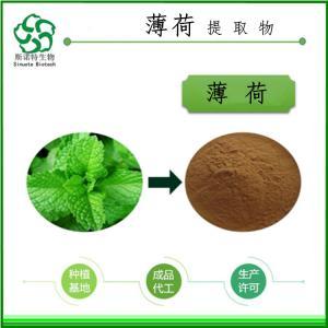 薄荷粉 食品生产许可资质齐全 厂家供应 现货