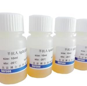 抗布鲁氏菌血清(布鲁氏菌凝集试验:科研教学实验专用)