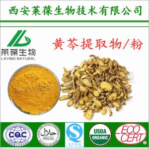 黄芩提取物 黄芩甙 黄芩粉