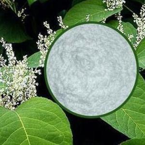 5%-99%白藜芦醇