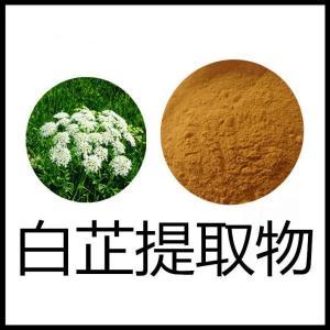 白芷提取物水溶食品资质齐全白芷粉