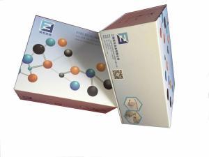 人血管生成素4(ANG-4)ELISA试剂盒 产品图片
