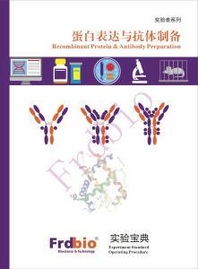 重组蛋白与抗体制备实验宝典