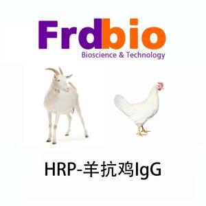 羊抗鸡HRP(科研用) 产品图片