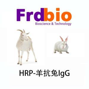羊抗兔HRP(仅供科研) 产品图片