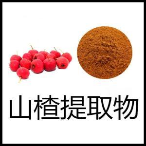 山楂粉 药食同源 厂家供应 可代工固体饮料 压片