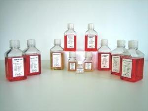 DMEM低糖(含L-丙氨酰-L-谷氨酰胺、HEPES,不含丙酮酸钠、酚红)500ML 产品图片