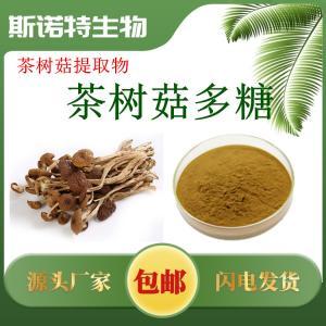 茶树菇多糖50% 茶树菇提取物