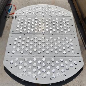 设计加工F1圆形浮阀塔板含降液板授液盘 产品图片