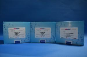卡那霉素农残快速试剂盒 产品图片