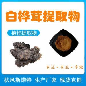 白桦茸提取物 桦褐孔菌黑金粉