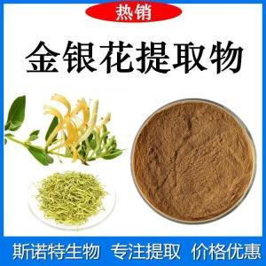 金银花提取物 食品原料粉